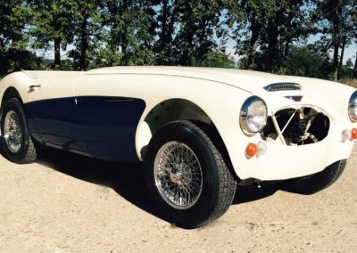 Sport and Specialty - 1967 Austin Healey BJ8