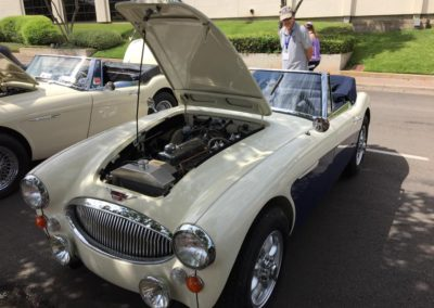 Sport and Specialty - The 2017 Austin-Healey Conclave